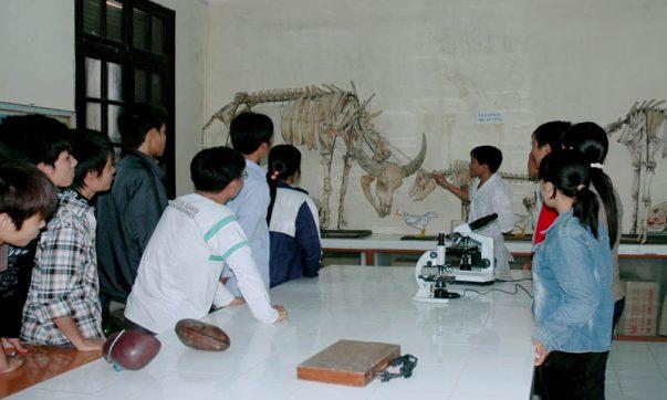 Top 5 Trường dạy nghề thú y tốt và uy tín nhất ở Hà Nội